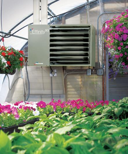 Инфракрасное отопление теплицы из поликарбоната